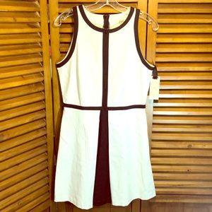 BB Dakota Optic White/Black Cotton Blend Dress